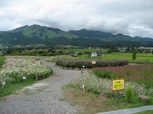 花公園%20001(1)